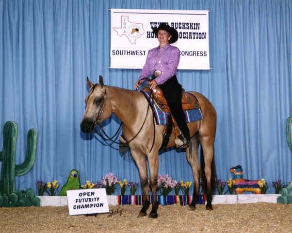 Quarter Horse Racing For Sale Texas Quarter Horses Sale Sale